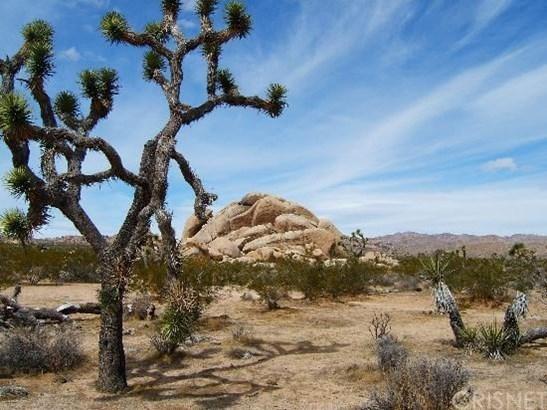0 Vacant, 29 Palms, CA - USA (photo 5)