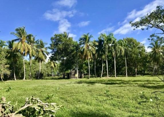 Rio-san-juan - DOM (photo 2)