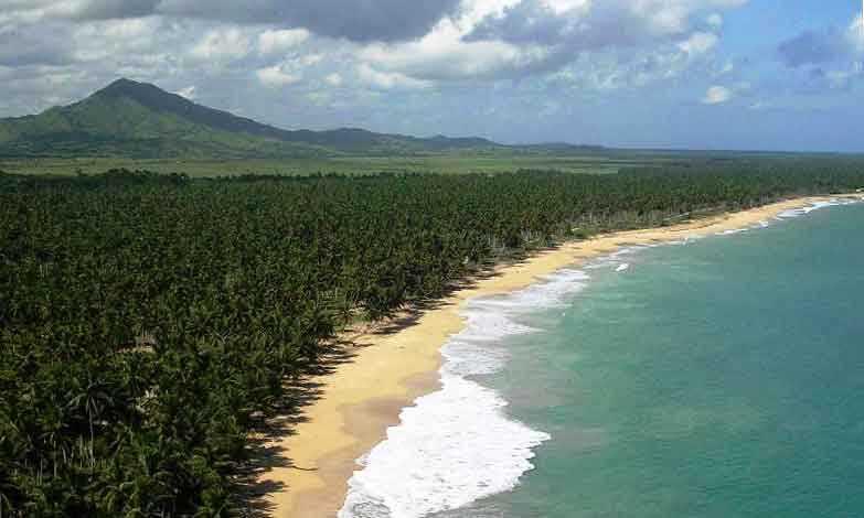 Punta-cana - DOM (photo 4)