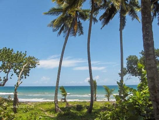 Las-canas - DOM (photo 3)