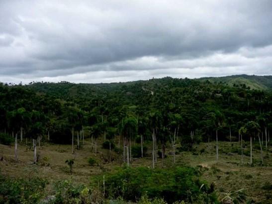 Sosua - DOM (photo 3)