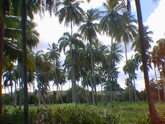 Rio-san-juan - DOM (photo 3)