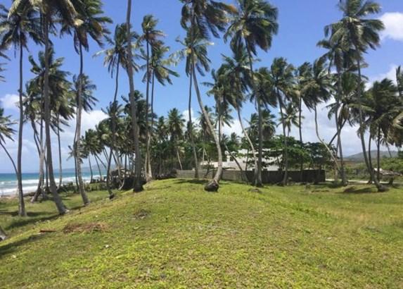 Las-canas - DOM (photo 4)