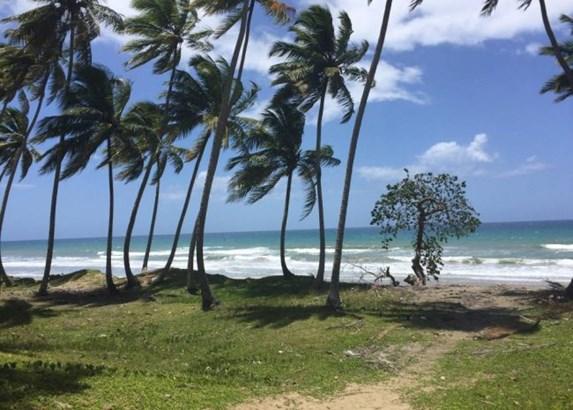 Las-canas - DOM (photo 5)