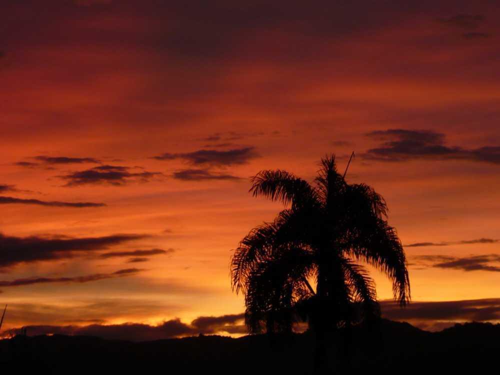 Jamao - DOM (photo 2)
