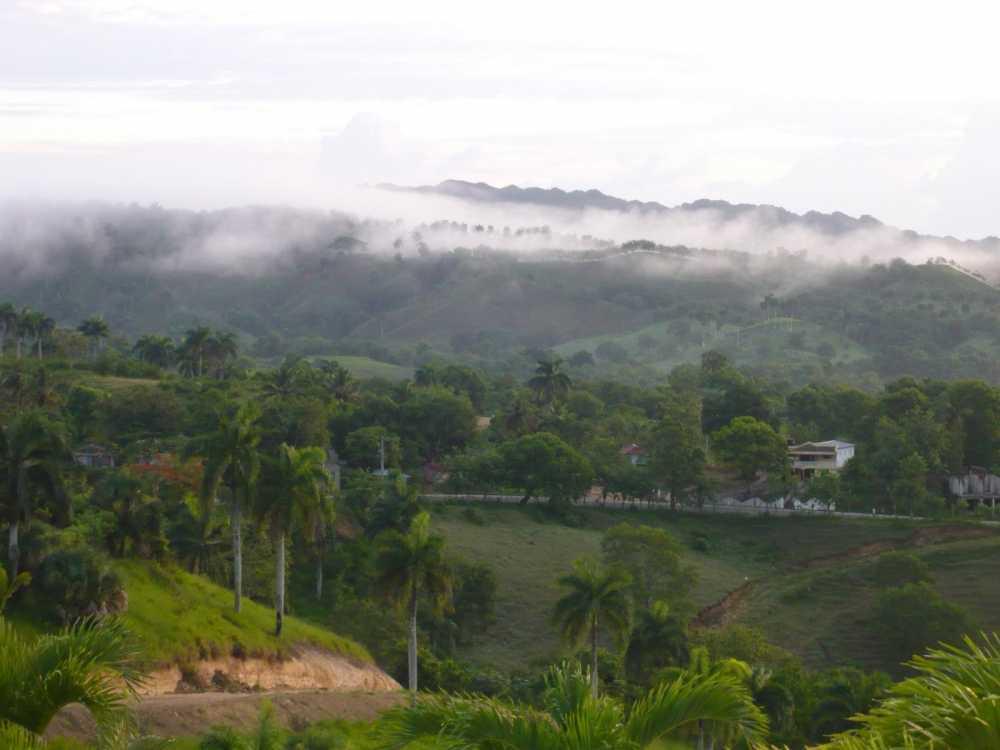Jamao - DOM (photo 4)