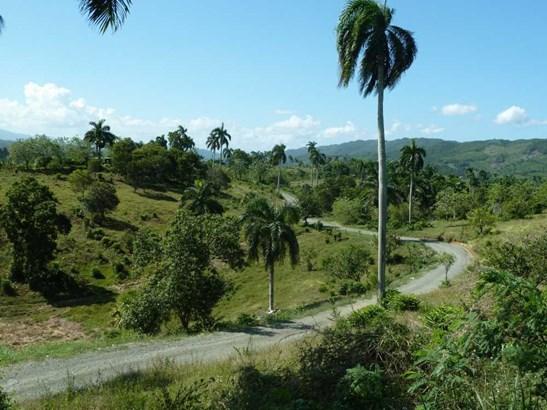Jamao - DOM (photo 5)