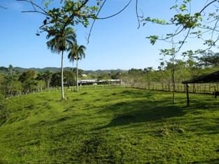 Jamao - DOM (photo 3)