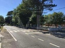 Porto - PRT (photo 4)