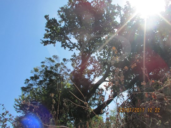 Vila Nova De Gaia - PRT (photo 4)
