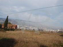 Viseu - PRT (photo 4)