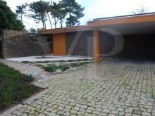 Lírios (fão), Braga - PRT (photo 3)