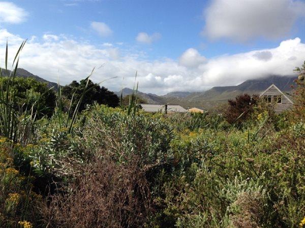1431 Dennys, Pringle Bay - ZAF (photo 1)