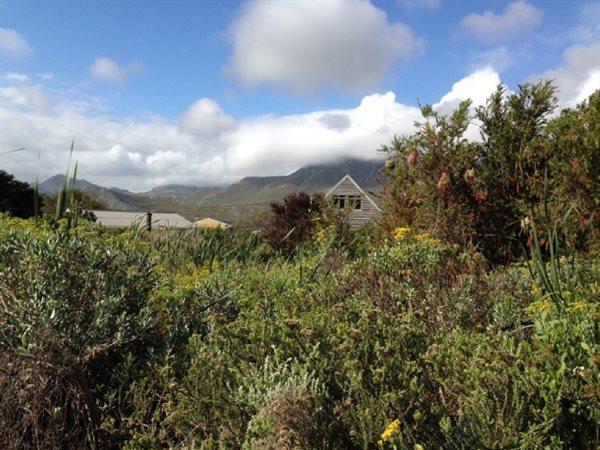 1431 Dennys, Pringle Bay - ZAF (photo 5)