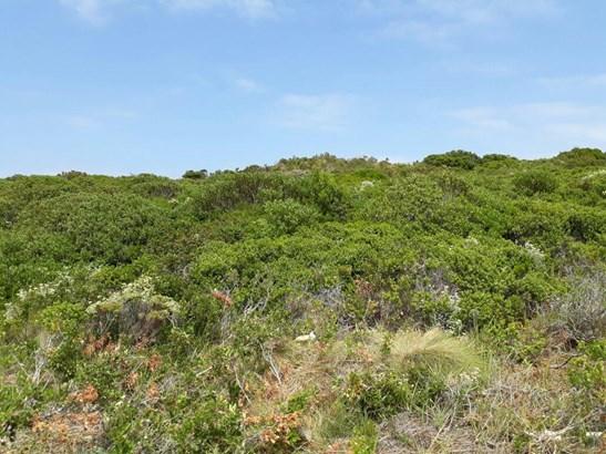 62 Buffels, Pringle Bay - ZAF (photo 3)