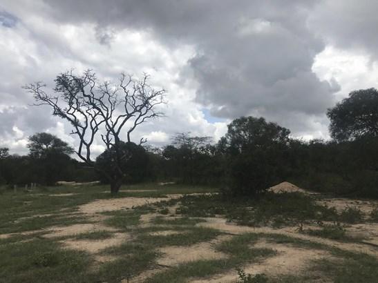 Moditlo Nature Reserve, Hoedspruit - ZAF (photo 5)
