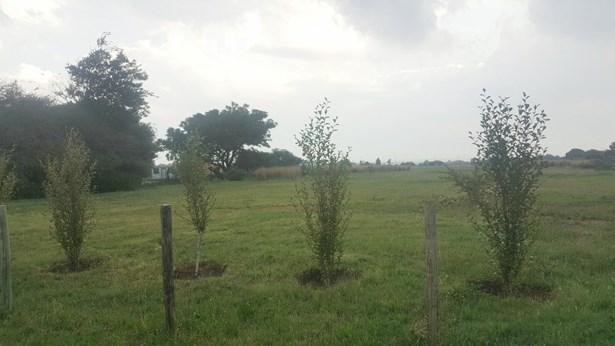 Denneoord, Brakpan - ZAF (photo 3)
