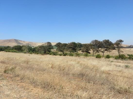 Clara Anna Fontein, Durbanville - ZAF (photo 5)