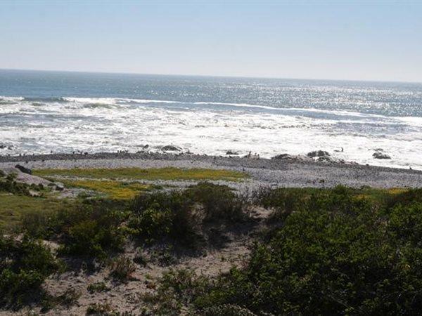 54 Eerste Laan, Shelley Point, St Helena Bay - ZAF (photo 5)