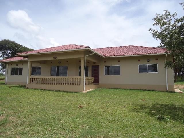 Ibex Hill, Lusaka - ZAF (photo 2)
