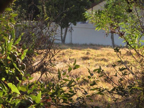 Vygeboom, Durbanville - ZAF (photo 1)