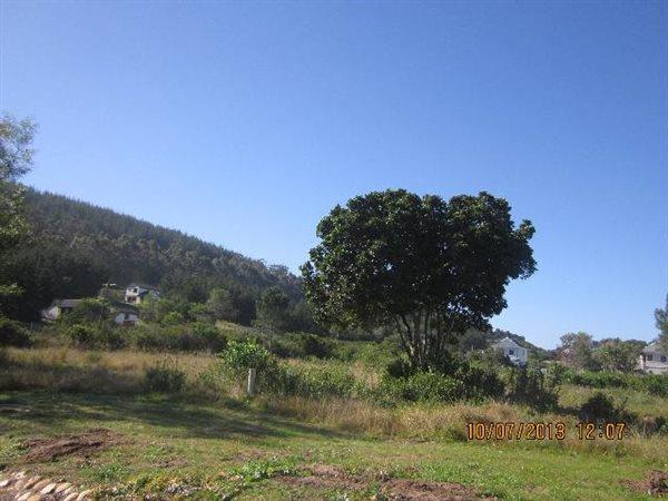 Meedingsride, Sedgefield - ZAF (photo 1)