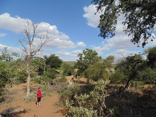 Grietjie Private Nature Reserve, Hoedspruit - ZAF (photo 2)