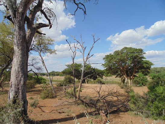 Grietjie Private Nature Reserve, Hoedspruit - ZAF (photo 3)
