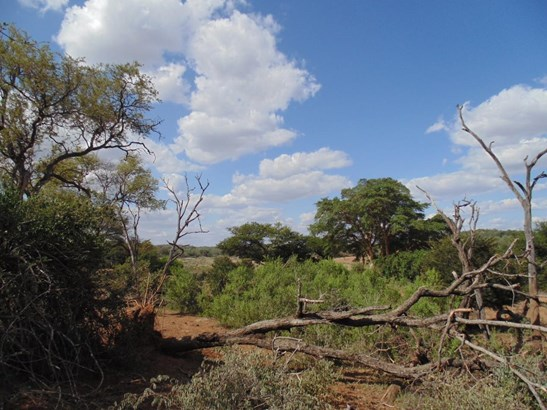 Grietjie Private Nature Reserve, Hoedspruit - ZAF (photo 4)