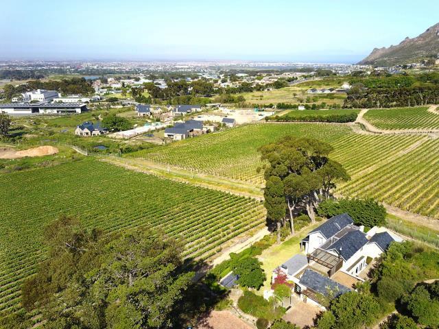 Steenberg Golf Estate, Cape Town - ZAF (photo 4)