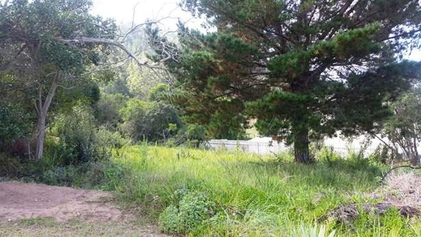 Groenvallei, Sedgefield - ZAF (photo 3)