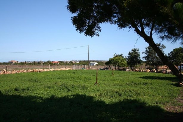 Aalwyndal, Mossel Bay - ZAF (photo 5)