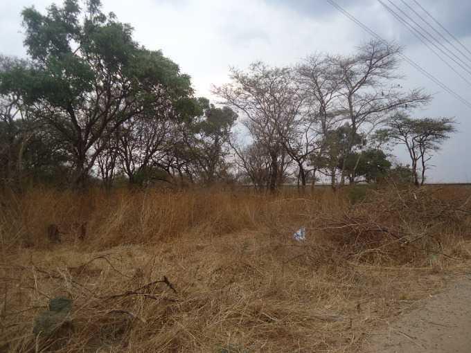 Eureka Park, Lusaka - ZAF (photo 2)