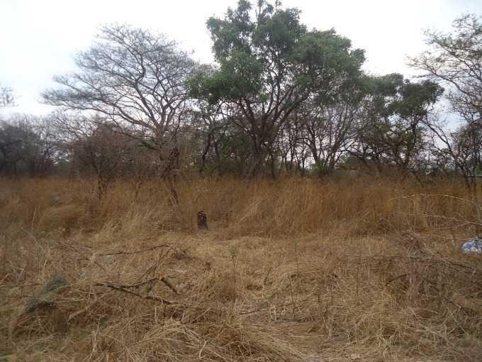 Eureka Park, Lusaka - ZAF (photo 3)