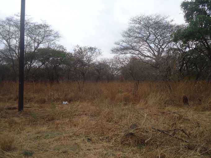 Eureka Park, Lusaka - ZAF (photo 4)