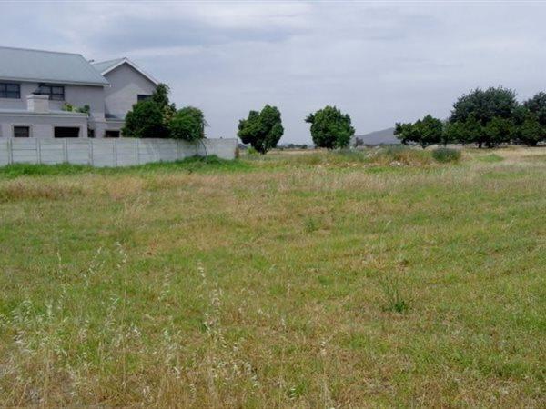 50 Grey, Rawsonville, Worcester - ZAF (photo 1)