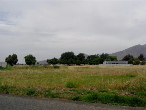 50 Grey, Rawsonville, Worcester - ZAF (photo 2)