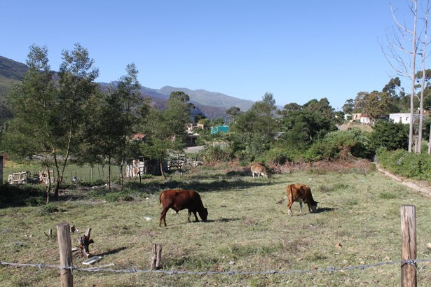Suurbraak, Swellendam - ZAF (photo 2)