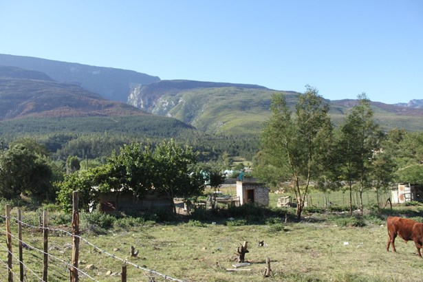 Suurbraak, Swellendam - ZAF (photo 4)