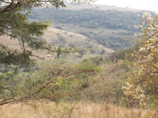 Darnall - ZAF (photo 1)