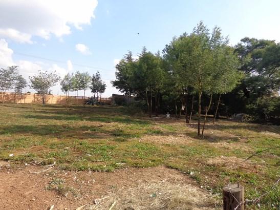 Lenasia South, Johannesburg - ZAF (photo 5)