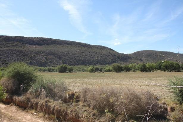 Ladismith - ZAF (photo 3)
