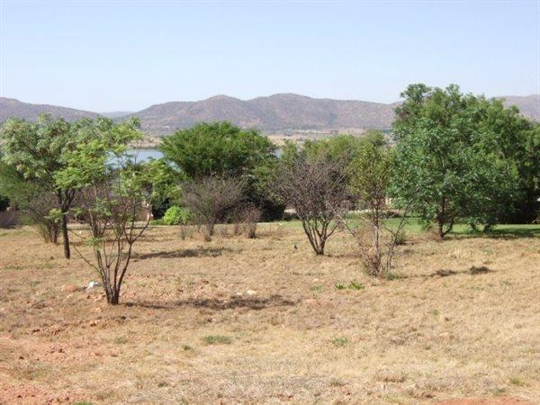 Kosmos, Hartbeespoort - ZAF (photo 2)