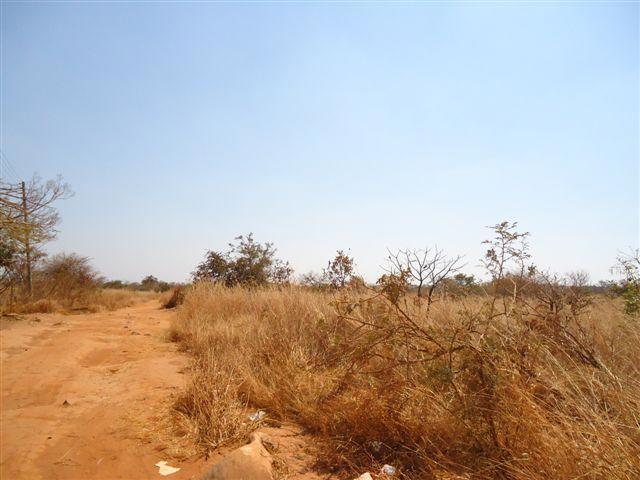 Chongwe, Lusaka - ZAF (photo 1)