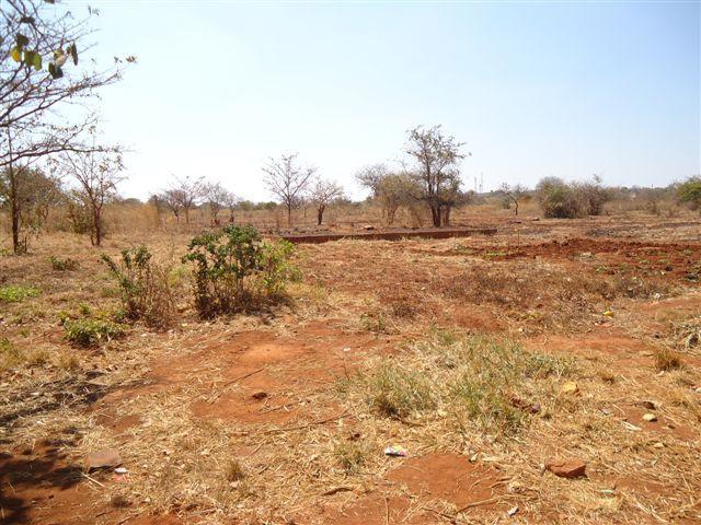 Chongwe, Lusaka - ZAF (photo 3)