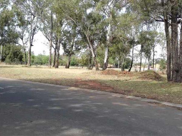 Pollak Park, Springs - ZAF (photo 5)