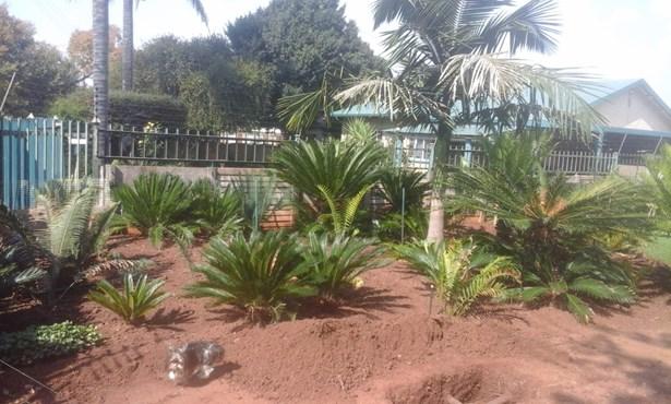 Booysens, Pretoria - ZAF (photo 4)