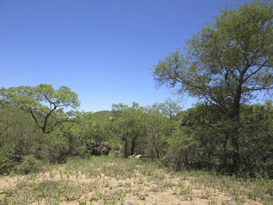 Leopard Rock Nature Reserve, Hoedspruit - ZAF (photo 3)