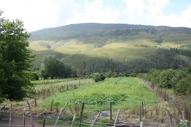 202 Main, Suurbraak, Swellendam - ZAF (photo 3)