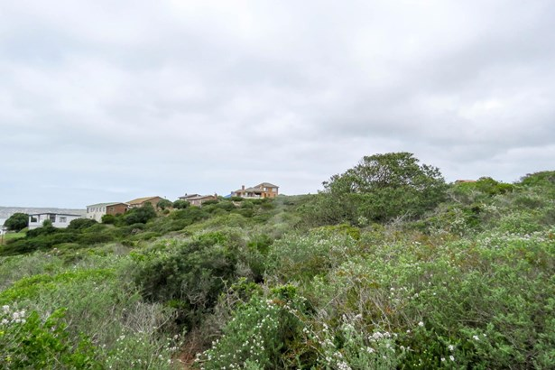 Boggomsbaai, Mossel Bay - ZAF (photo 4)